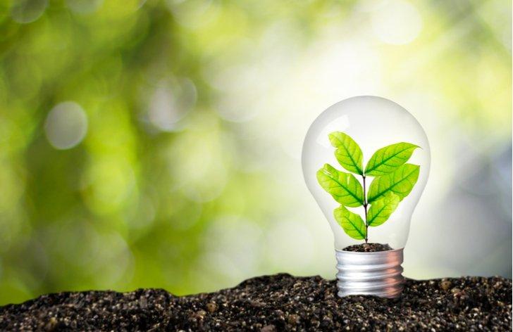 Zelená elektřina: cena, na co se dívat při výběru, původ