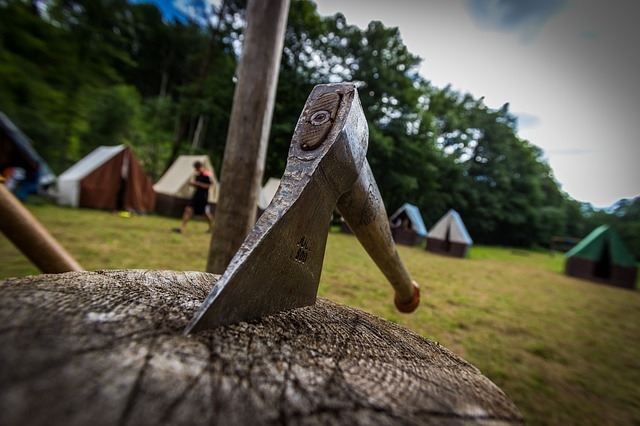 Jak pojistit dítě na táboře v přírodě