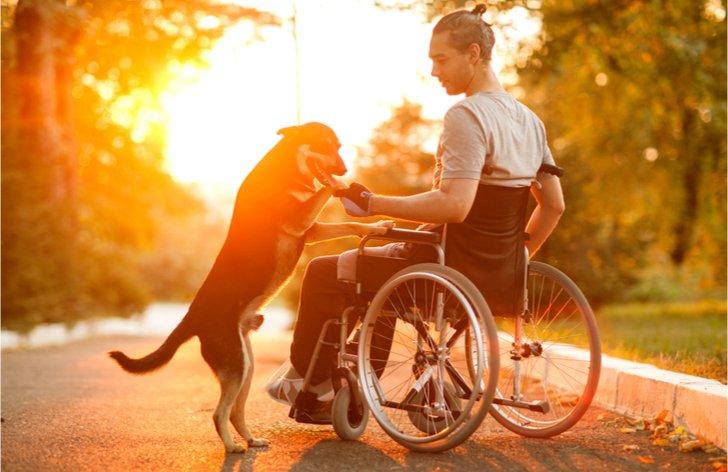 Budou mít invalidé světlejší zítřky?