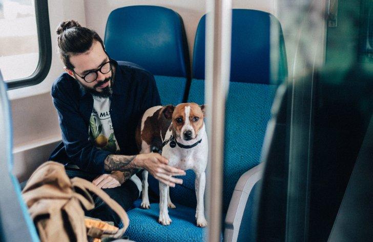 preprava psov vo vlaku ako na to
