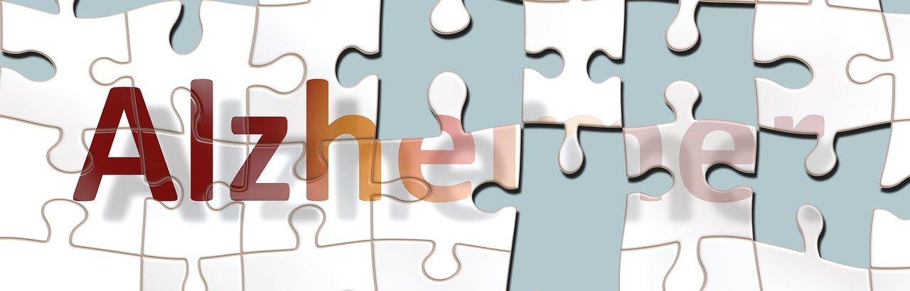Alzheimer a nemoci stáří